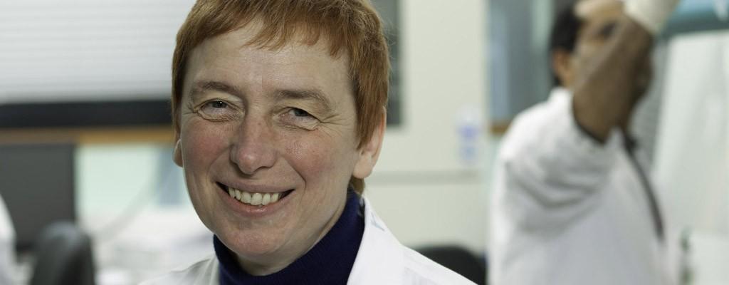 Prof. Klaudia Brix