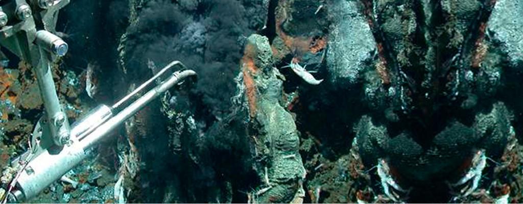 Hot springs on the sea floor